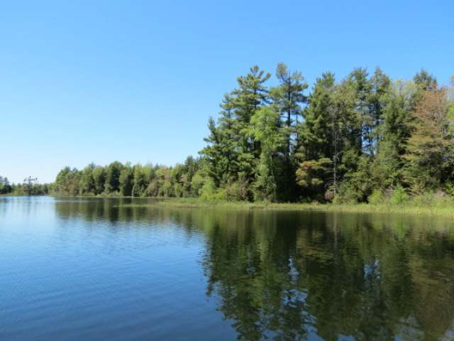 lac du flambeau big and beautiful singles Beautiful lac du flambeau tour and mountain biking there are a number of quiet road routes around the community of lac du flambeau two very scenic rides start in downtown lac du flambeau and wind through the surrounding lake country.
