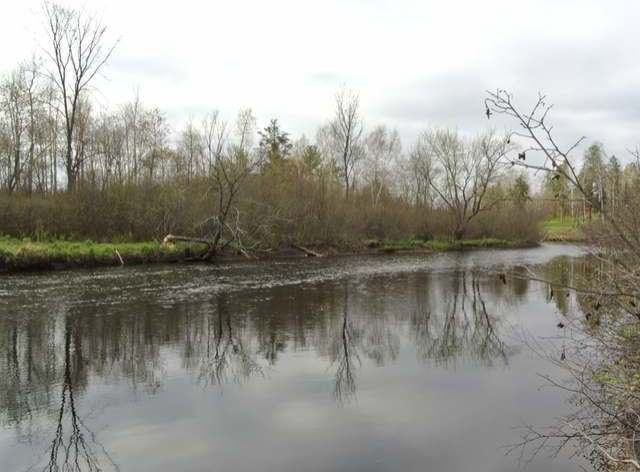 Lot 5 Rocky Acres Dr, Harshaw, WI 54529