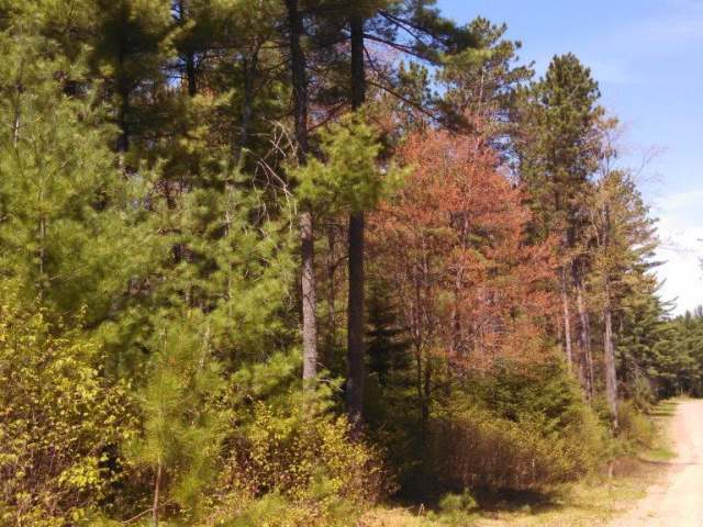 ON Pine Crest Ln #Lot 6 & 7, Plum Lake, WI 54560