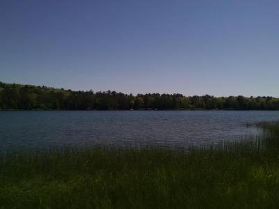 Photo of ON Oak Leaf Ln #Lot 22, Land O Lakes, WI 54540