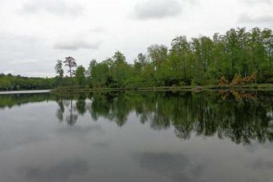 13105 Ty Bach Ln, Lac Du Flambeau, WI 54548