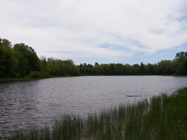 23277 Moon Lake Rd, Watersmeet, MI 49969