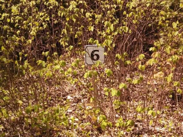 ON Pine Crest Ln #Lot 6, Plum Lake, WI 54560