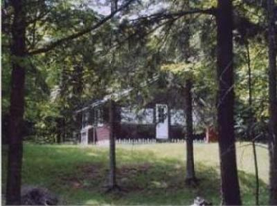 Photo of 19710 Eagle Dr, Watersmeet, MI 49969