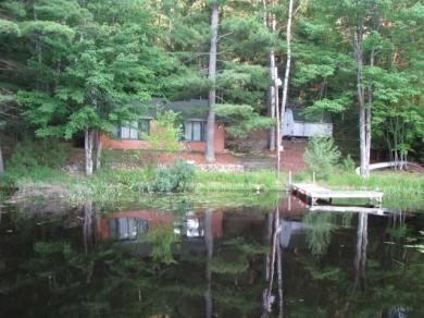 833 Leatzow Rd, Three Lakes, WI 54562