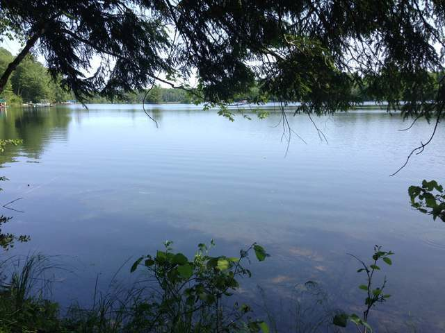 Lot 2 River Rd, Lake Tomahawk, WI 54539