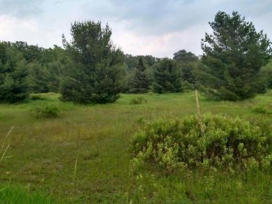 ON Sugar Maple Village Rd #Lot 15, Phelps, WI 54554