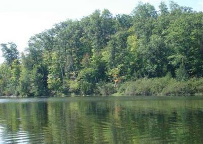 Photo of ON Clear Lake Rd E, Lac Du Flambeau, WI 54538