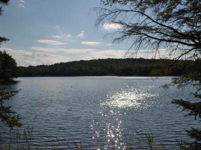 Photo of E14090 Miller Lake Rd, Marenisco, MI 49947