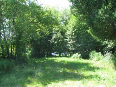 Photo of ON Lake Dr, Three Lakes, WI 54562