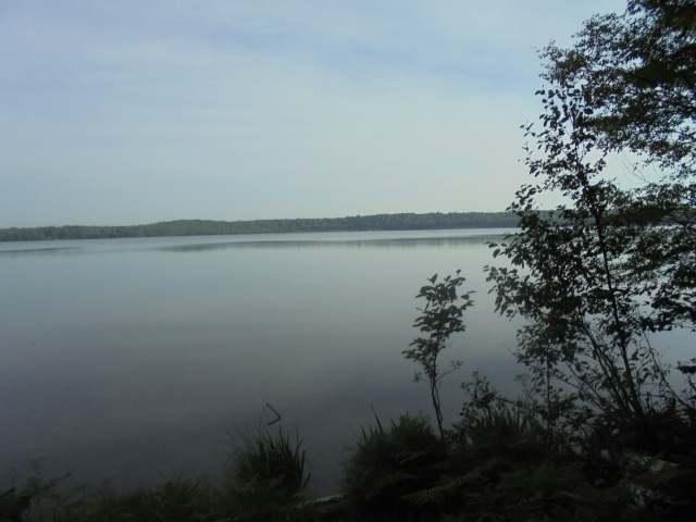 11050 E Halsey Lake Rd, Long Lake, WI 54542