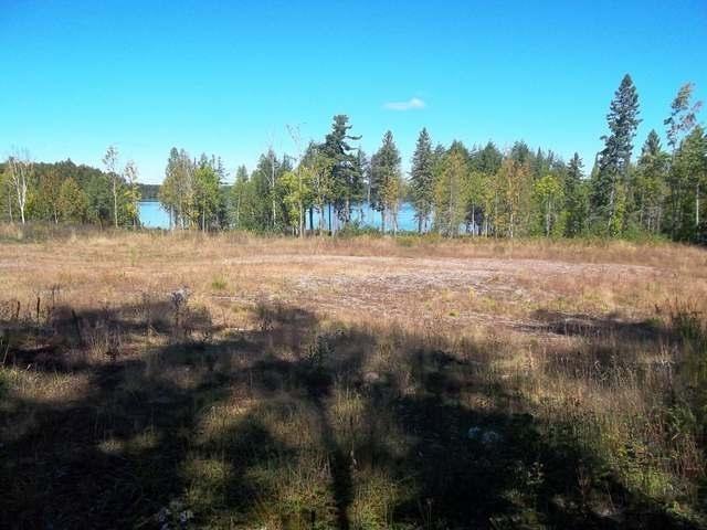 ON Palmer Lake Rd, Land O Lakes, WI 54540