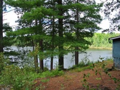 Photo of 6071 Steve Javenkowski Rd, Three Lakes, WI 54562