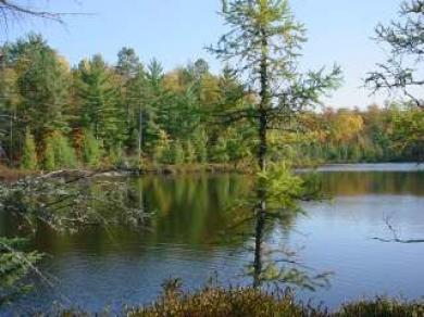 Lot 5 Tri Lake Rd, Lac Du Flambeau, WI 54538