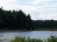 ON Carlson Rd, Land O Lakes, WI 54540