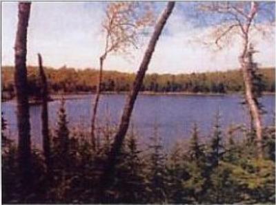 Photo of Lot 4 Ottawa Ln, Land O Lakes, WI 54540