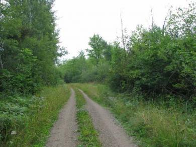 near5581 Porcupine Ln, Hackett, WI 54556