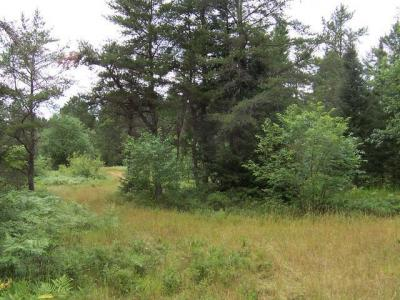 Photo of ON Hwy 45 #Lot, Land O Lakes, WI 54540