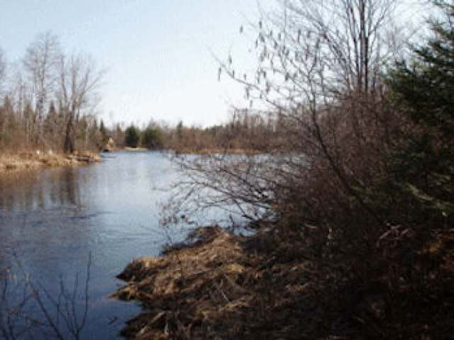 ON Woody Rd, Park Falls, WI 54552