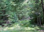 5641 Cth D, Lake Tomahawk, WI 54539 photo 2