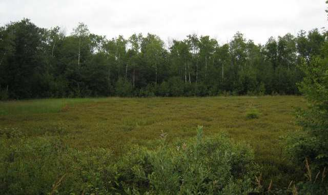 lot on 4th St N, Tomahawk, WI 54487