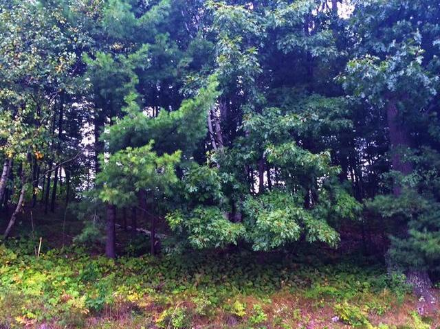 Lot 4 Theiler Dr, Tomahawk, WI 54487