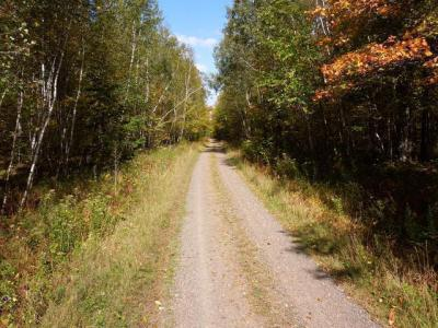 Photo of W8700 County Line Rd, Ogema, WI 54490
