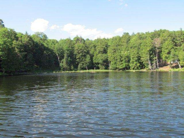 NEAR Channel Rd #Lot 8, Watersmeet, MI 49969
