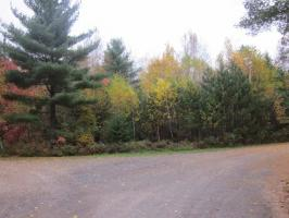 2927 Owls Nest Ln, Conover, WI 54521