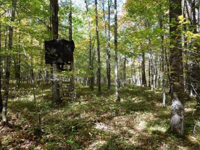 Photo of 8700 County Line Rd, Westboro, WI 54490