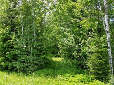 10 Acres Cth S, Hiles, WI 54511