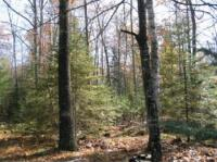 Lot 12 South Bay Tr, St Germain, WI 54558
