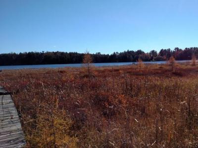 Photo of NEAR Buffalo Dr, Sugar Camp, WI 54521