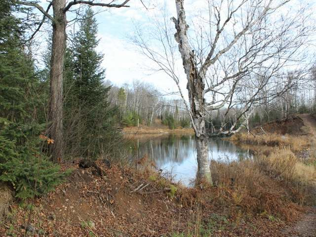 Off Pine Forest Rd, Mercer, WI 54547