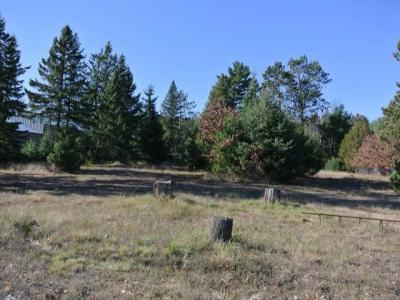 Photo of 163 Hwy 51, Arbor Vitae, WI 54568