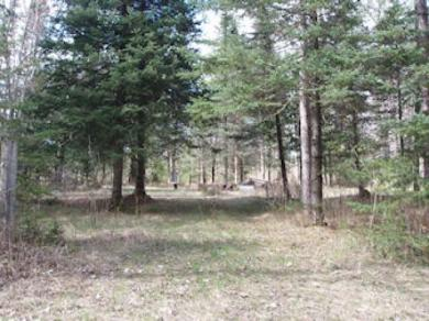 ON Griffith Rd, Butternut, WI 54514
