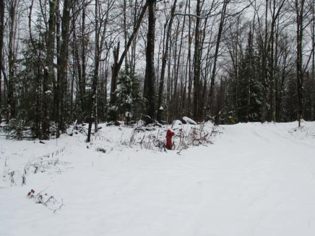 Lot #1 Coveyville Rd, Phelps, WI 54554