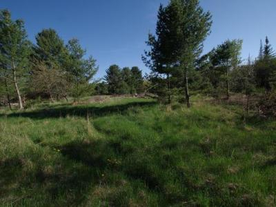 Photo of ON Winkler Rd, Three Lakes, WI 54562