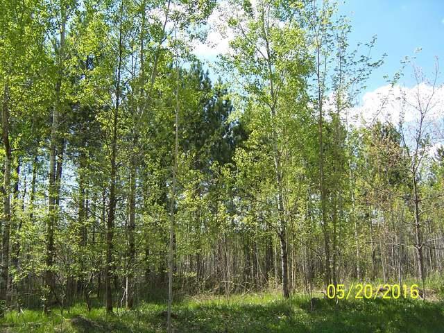80 acres Johnson Rd, Crandon, WI 54520