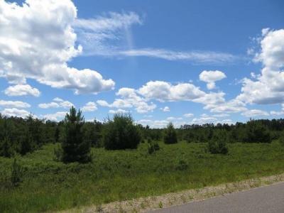 Photo of Lot 21 Woodruff Rd, Woodruff, WI 54568