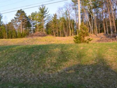Photo of Hwy 51, Arbor Vitae, WI 54568
