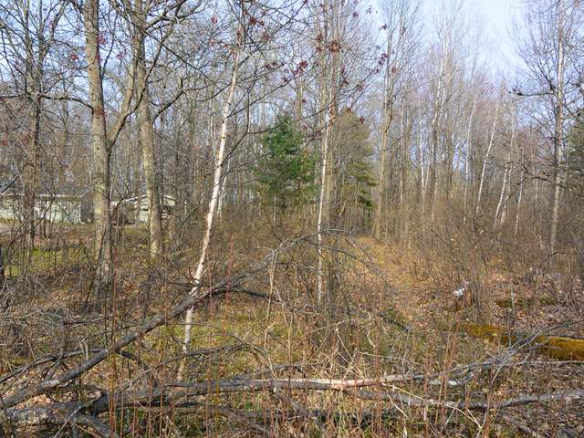 Lot 18 Grouse Rd, Minocqua, WI 54548