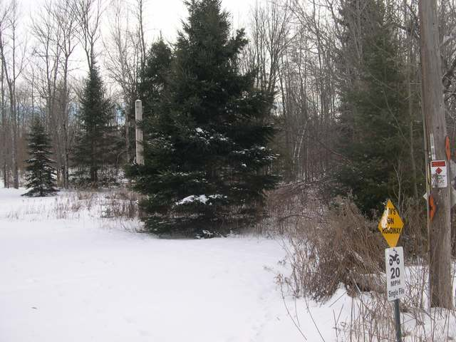 ON South Shore Dr, Pickerel, WI 54465