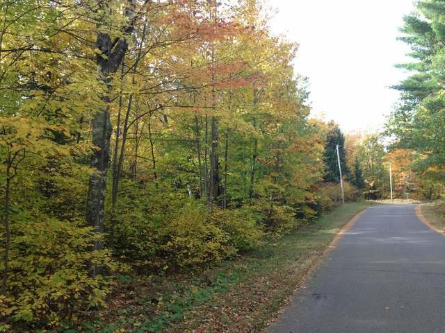 Lot 130 White Birch Ln, Minocqua, WI 54548