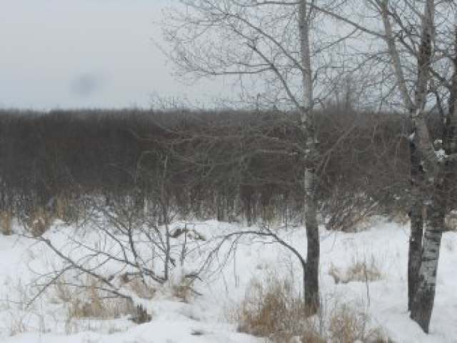 Off Maple Grove Rd, Phillips, WI 54555