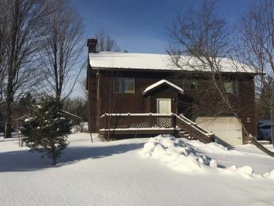 2161 Cth A, Phelps, WI 54554