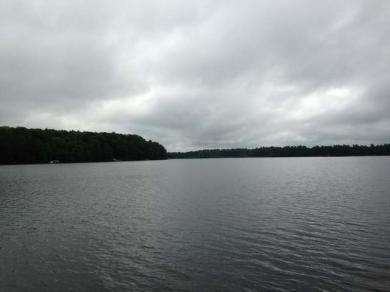 7644 Cth X, Three Lakes, WI 54562