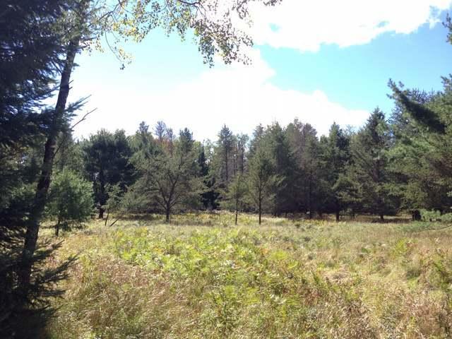 31 ac. Pine Lake Rd, Rhinelander, WI 54501