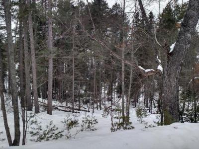 Photo of ON Star Lake Rd, Eagle River, WI 54521