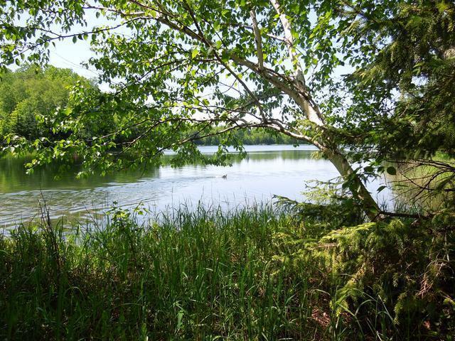 ON Murphy Lake Rd, Presque Isle, WI 54557